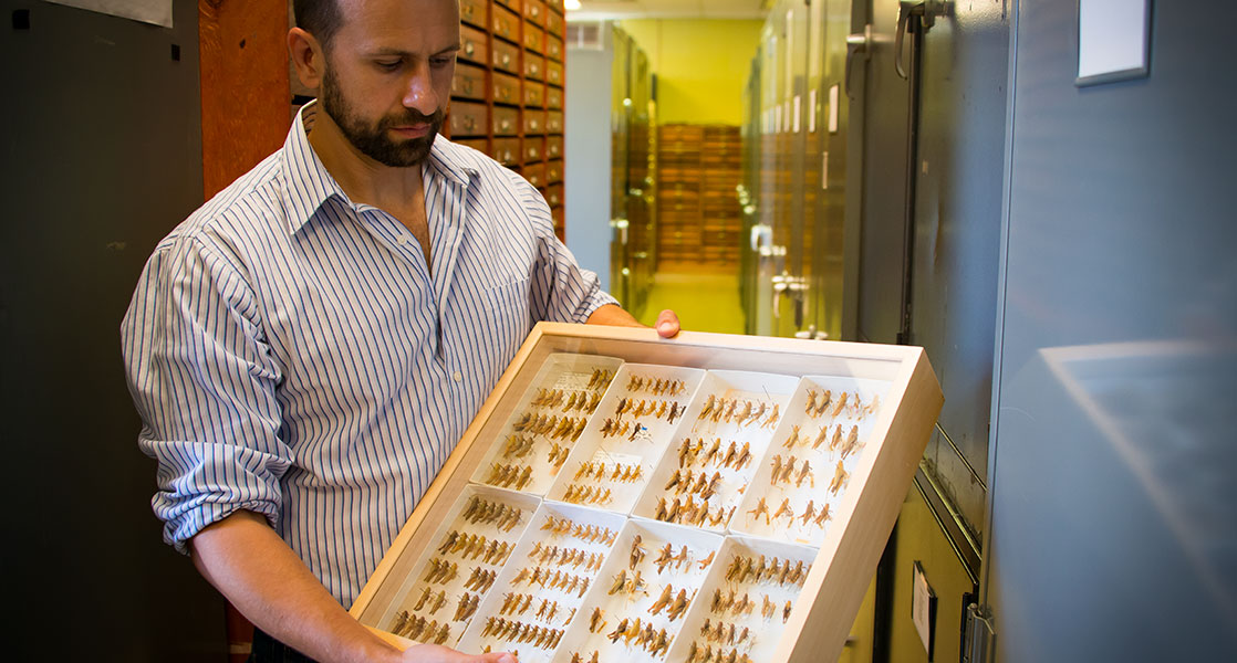Mississippi Entomological Museum